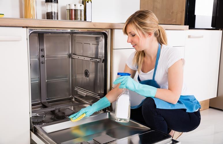 Чем чистить посудомоечную машину